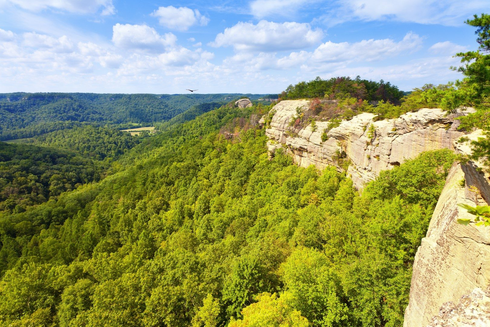 Hiking In Red River Gorge Scenic Cabin Rentals